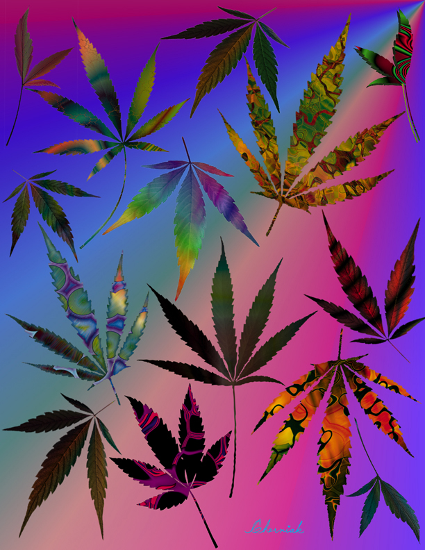 stock vector Marijuana leaf